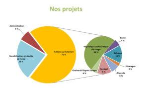 Graphique secteurs - Nos projets 2017